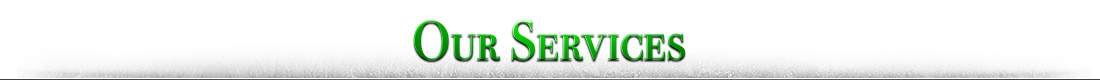 Petersen Landscaping and Design - Our Services Cheshire County NH
